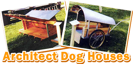 Dog Houses By Architect